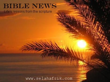 bible news